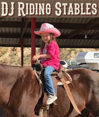 DJ Riding Stables