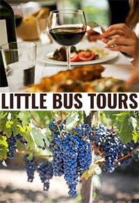 Little Bus Tours
